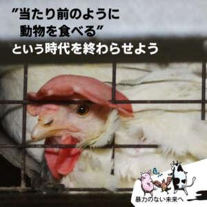 当たり前のように動物を食べるという時代を終わらせよう